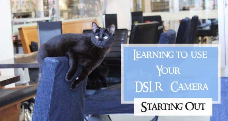 Learning a DSLR Camera Beginning