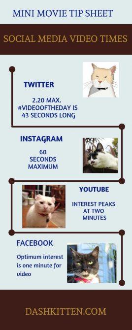 Social Media Video Times