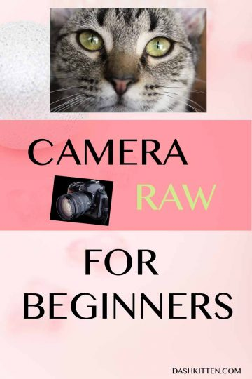 Camera Raw for Beginners Pin