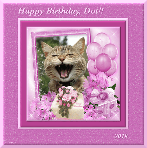 Dot Kitten celebration graphic with photograph