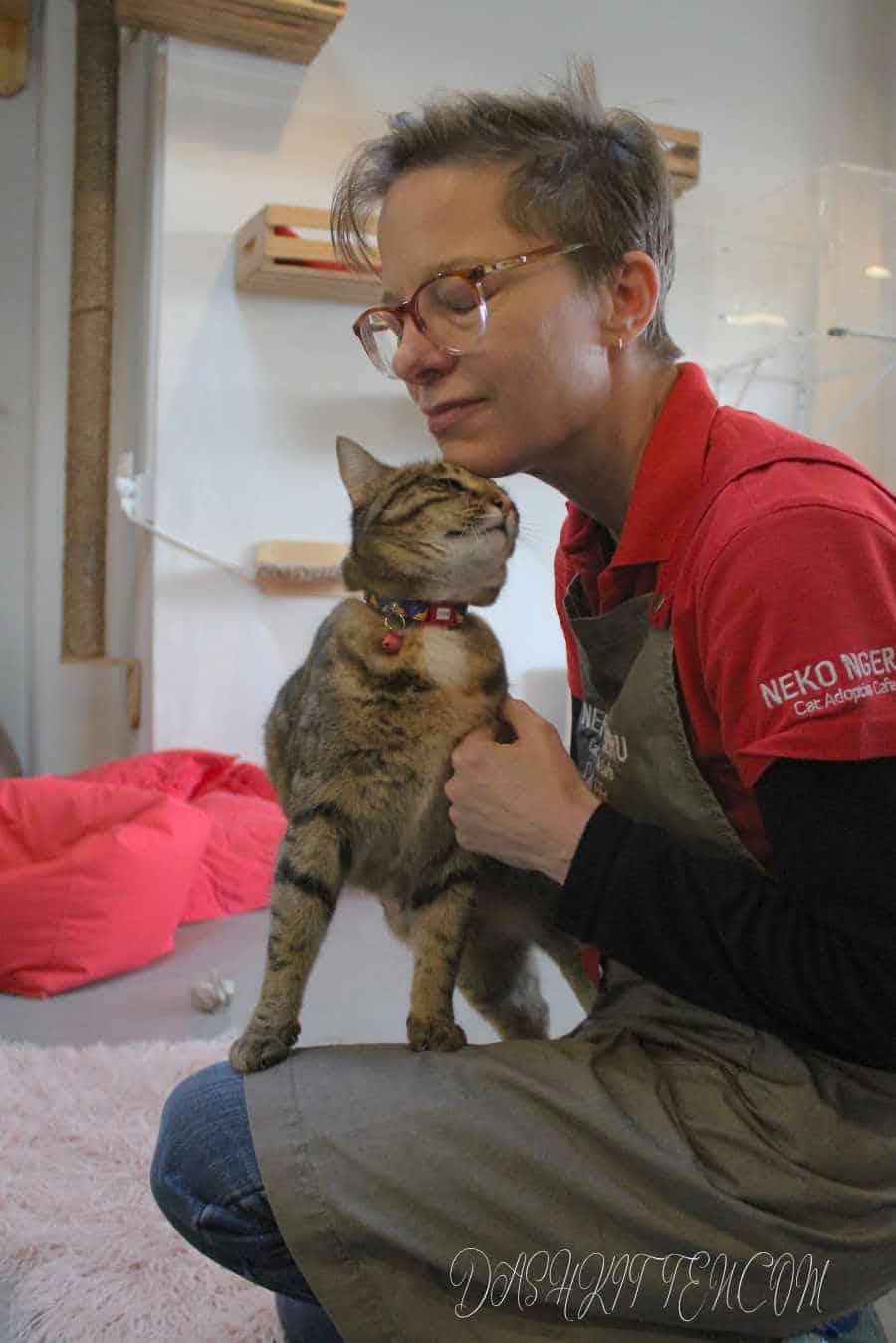 A beautiful portrait of a loving cat and her owner. A  successful cat portrait